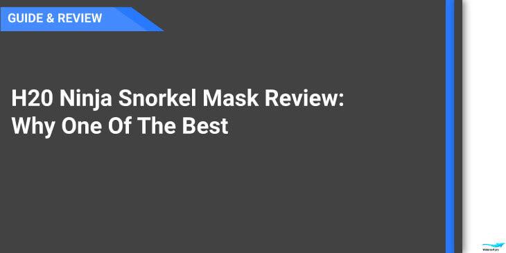 ninja snorkel mask